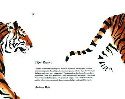 Tiger final small5